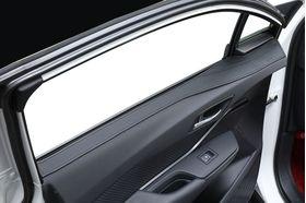 アクセントラインセット C-HR ブラック×ブラック装着イメージ